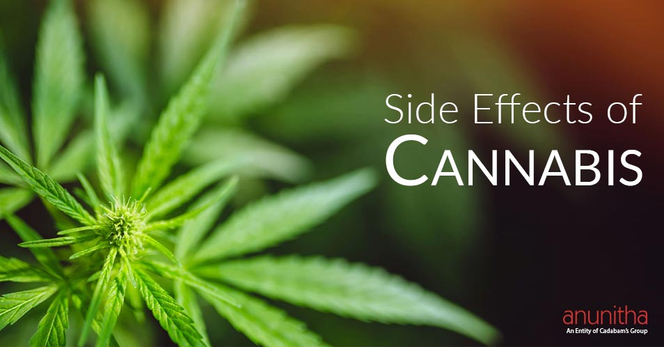 Side Effects of Cannabis | Detoxing from Marijuana