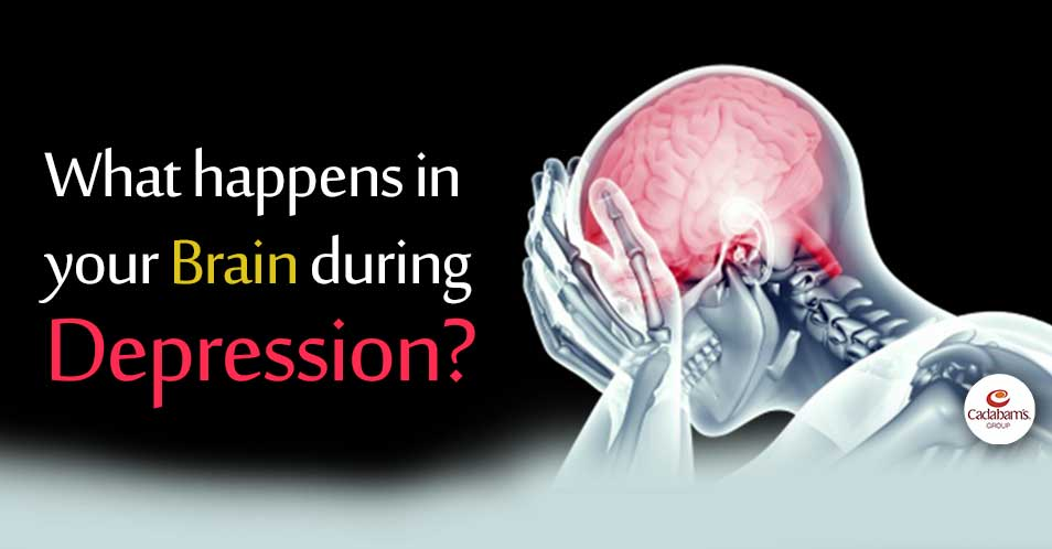 What happens in your Brain during Depression?