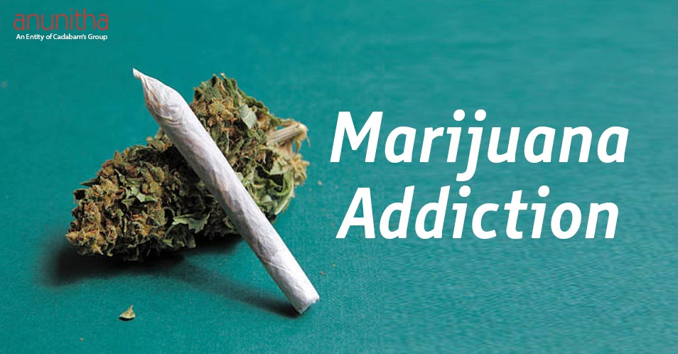 Marijuana Addiction – Effects of Marijuana Drug